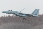 Tomo-Papaさんが、千歳基地で撮影した航空自衛隊 F-15J Eagleの航空フォト(写真)