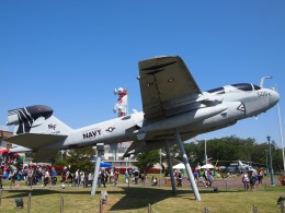 FT51ANさんが、厚木飛行場で撮影したアメリカ海軍 EA-6B Prowler (G-128)の航空フォト(飛行機 写真・画像)