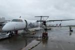 Y.Hさんが、シアトル タコマ国際空港で撮影したホライゾン航空 DHC-8-402Q Dash 8の航空フォト(写真)