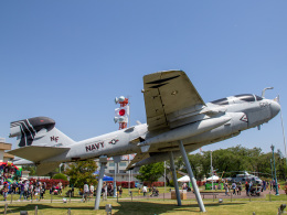 Mame @ TYOさんが、厚木飛行場で撮影したアメリカ海軍 EA-6B Prowler (G-128)の航空フォト(飛行機 写真・画像)