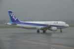nobu2000さんが、宮崎空港で撮影した全日空 A320-211の航空フォト(写真)