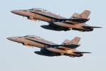 Tomo-Papaさんが、茨城空港で撮影したアメリカ海兵隊 F/A-18D Hornetの航空フォト(写真)