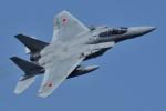 sepia2016さんが、茨城空港で撮影した航空自衛隊 F-15J Eagleの航空フォト(写真)