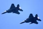 ザキヤマさんが、熊本空港で撮影した航空自衛隊 F-15DJ Eagleの航空フォト(写真)