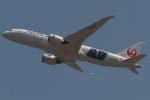 木人さんが、成田国際空港で撮影した日本航空 787-8 Dreamlinerの航空フォト(写真)