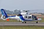 sawakazuさんが、仙台空港で撮影したオールニッポンヘリコプター AS365N3 Dauphin 2の航空フォト(写真)