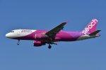 islandsさんが、成田国際空港で撮影したピーチ A320-214の航空フォト(写真)