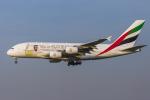 mameshibaさんが、成田国際空港で撮影したエミレーツ航空 A380-861の航空フォト(写真)