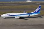 たみぃさんが、中部国際空港で撮影した全日空 737-881の航空フォト(写真)