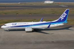 たみぃさんが、中部国際空港で撮影した全日空 737-881の航空フォト(飛行機 写真・画像)