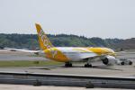 yabyanさんが、成田国際空港で撮影したスクート (〜2017) 787-8 Dreamlinerの航空フォト(飛行機 写真・画像)