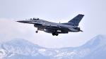 ららぞうさんが、千歳基地で撮影したアメリカ空軍 F-16CM-50-CF Fighting Falconの航空フォト(写真)