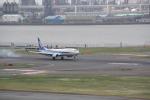 AntonioKさんが、羽田空港で撮影した全日空 737-881の航空フォト(写真)