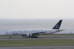 AntonioKさんが、羽田空港で撮影した全日空 777-281の航空フォト(写真)
