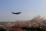 ☆ライダーさんが、成田国際空港で撮影した日本貨物航空 747-8KZF/SCDの航空フォト(写真)