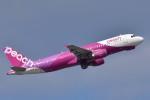Take51さんが、那覇空港で撮影したピーチ A320-214の航空フォト(写真)