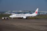 delawakaさんが、羽田空港で撮影した日本航空 737-846の航空フォト(写真)