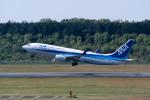 delawakaさんが、熊本空港で撮影した全日空 737-881の航空フォト(写真)