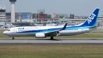 coolinsjpさんが、伊丹空港で撮影した全日空 737-881の航空フォト(写真)