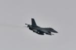 パラノイアさんが、千歳基地で撮影したアメリカ空軍 F-16CM-50-CF Fighting Falconの航空フォト(写真)
