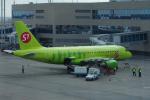 yabyanさんが、ドモジェドヴォ空港で撮影したS7航空 A319-114の航空フォト(写真)