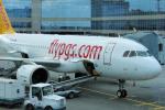 yabyanさんが、ドモジェドヴォ空港で撮影したペガサス・エアラインズ A320-251Nの航空フォト(写真)