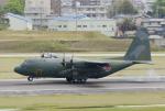 eagletさんが、名古屋飛行場で撮影した航空自衛隊 C-130H Herculesの航空フォト(写真)