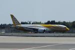 yabyanさんが、成田国際空港で撮影したスクート 787-8 Dreamlinerの航空フォト(飛行機 写真・画像)
