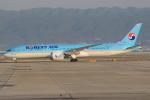 キイロイトリさんが、関西国際空港で撮影した大韓航空 787-9の航空フォト(写真)