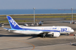 panchiさんが、羽田空港で撮影した全日空 787-8 Dreamlinerの航空フォト(写真)