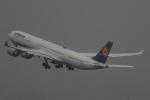 imosaさんが、羽田空港で撮影したルフトハンザドイツ航空 A340-642Xの航空フォト(写真)