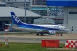 KAZKAZさんが、福岡空港で撮影したANAウイングス 737-54Kの航空フォト(写真)