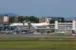 Gpapaさんが、伊丹空港で撮影した日本エアコミューター DHC-8-402Q Dash 8の航空フォト(写真)