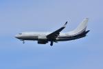 レッドベアーさんが、羽田空港で撮影したボーイング 737-7BC BBJの航空フォト(写真)