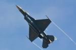 sukiさんが、岐阜基地で撮影した航空自衛隊 F-2Aの航空フォト(写真)