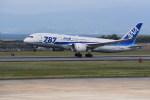 kumagorouさんが、長崎空港で撮影した全日空 787-8 Dreamlinerの航空フォト(写真)