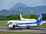 まーたんさんが、高松空港で撮影した全日空 787-8 Dreamlinerの航空フォト(写真)