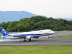 まーたんさんが、高松空港で撮影した全日空 A321-211の航空フォト(写真)