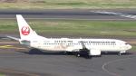 誘喜さんが、羽田空港で撮影した日本トランスオーシャン航空 737-8Q3の航空フォト(写真)