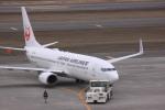 けいとパパさんが、新千歳空港で撮影した日本航空 737-846の航空フォト(写真)