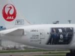 Dreamliner_NRT51さんが、成田国際空港で撮影した日本航空 787-8 Dreamlinerの航空フォト(写真)