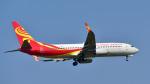 パンダさんが、成田国際空港で撮影した海南航空 737-84Pの航空フォト(写真)