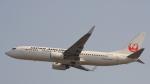 Cassiopeia737さんが、関西国際空港で撮影した日本航空 737-846の航空フォト(写真)