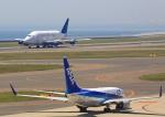 タミーさんが、中部国際空港で撮影したボーイング 747-409(LCF) Dreamlifterの航空フォト(写真)