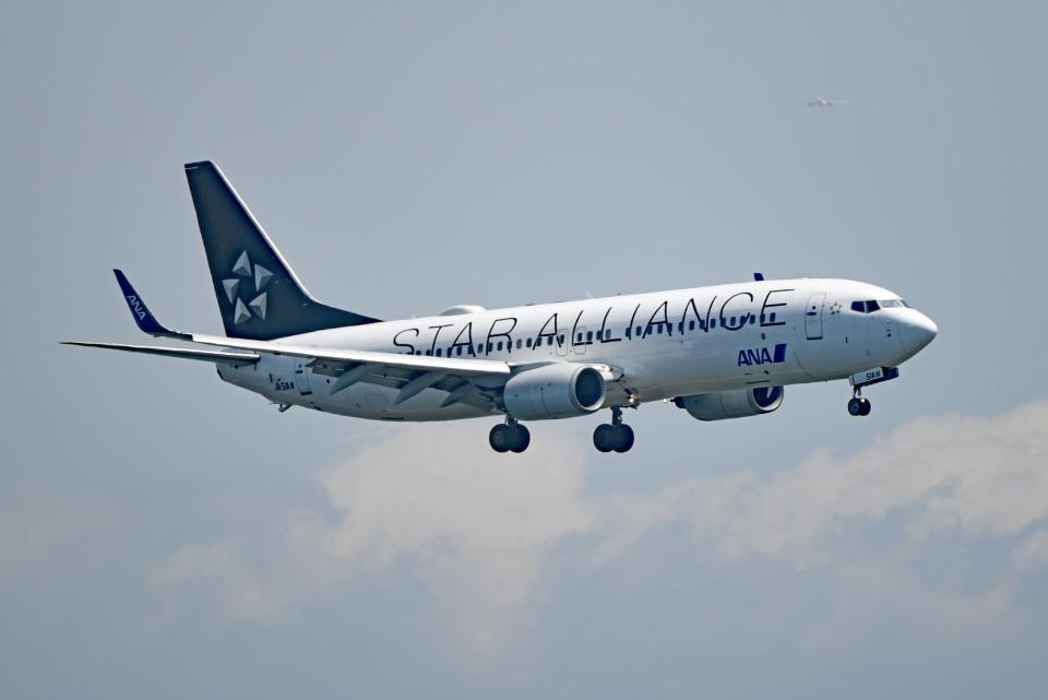 tsubasa0624さんの全日空 Boeing 737-800 (JA51AN) 航空フォト