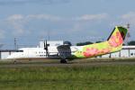 A-Chanさんが、札幌飛行場で撮影したエアーニッポンネットワーク DHC-8-314Q Dash 8の航空フォト(写真)
