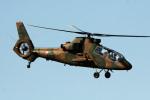 A-Chanさんが、札幌飛行場で撮影した陸上自衛隊 OH-1の航空フォト(写真)