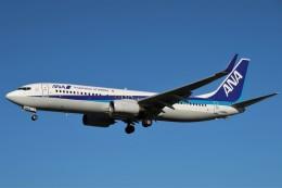 らむえあたーびんさんが、伊丹空港で撮影した全日空 737-881の航空フォト(飛行機 写真・画像)
