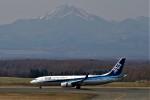 にしやんさんが、中標津空港で撮影した全日空 737-881の航空フォト(写真)