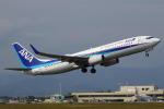 wish-blueさんが、高知空港で撮影した全日空 737-881の航空フォト(写真)